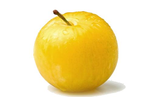 ciruela-amarilla-renco